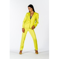 Yellow jacket in cadì
